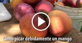 Así se corta el mango