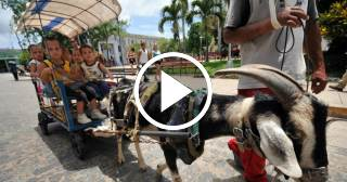 La tradición de pasear en chivo por el parque Vidal de Santa Clara