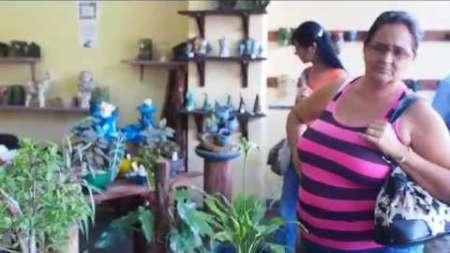 En el Paseo del Prado de La Habana hay una tienda especializada en Bonsais